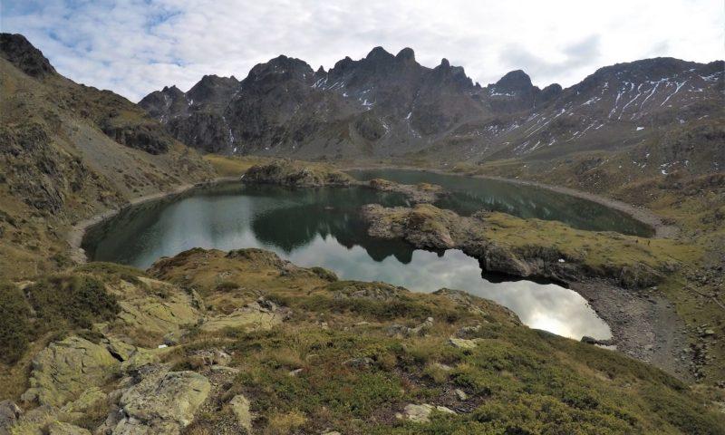 Lacs robert