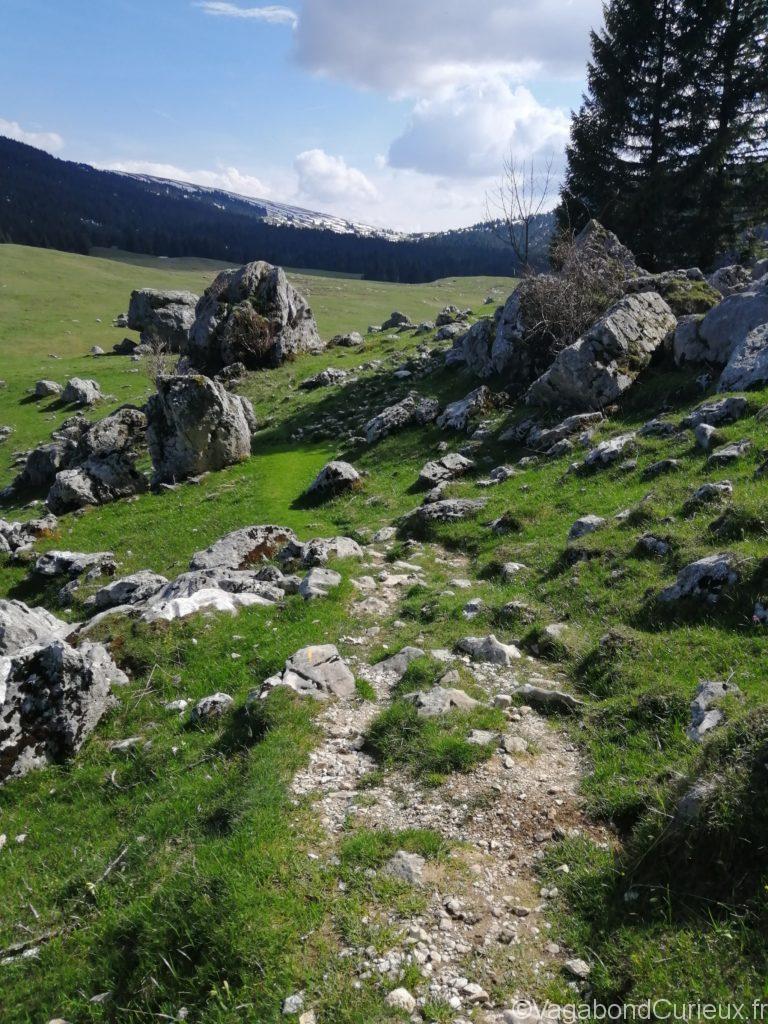 Plateau de l'Alpe